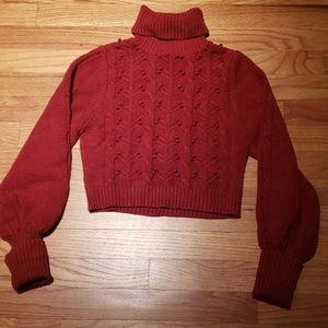 Turtleneck crop top sweater